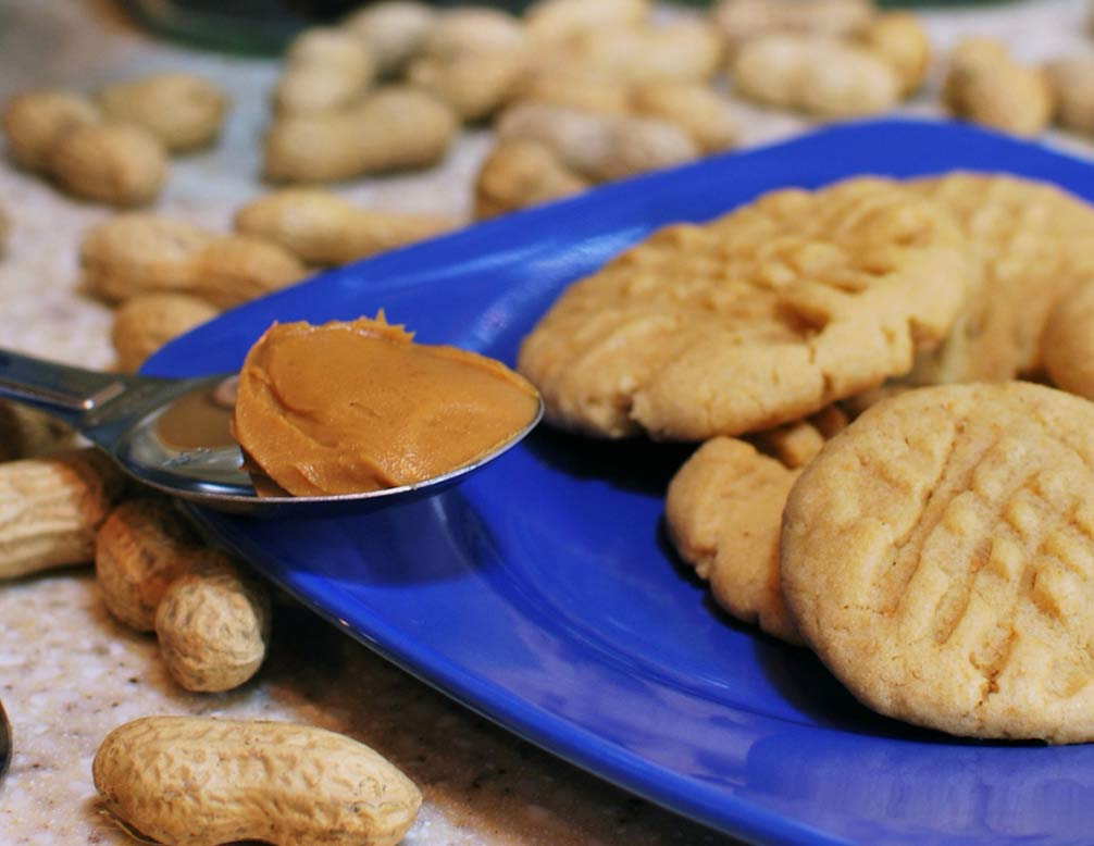 Easy Protein Peanut Butter Cookies   Recipe   Biox Performance Nutrition