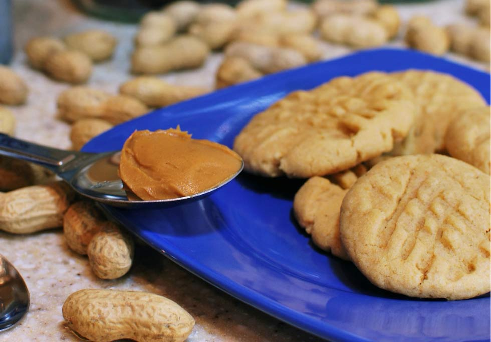 Easy Protein Peanut Butter Cookies | Recipe | Biox Performance Nutrition